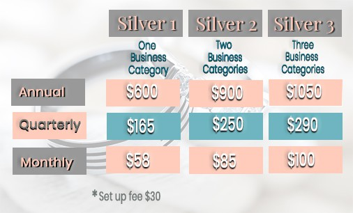 Silver package payment and subscription options